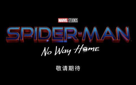 """《蜘蛛侠3》正式杀青 """"荷兰弟""""片场照伤痕累累"""